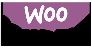 Webshop laten maken Zutphen